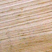 grain of lime wood