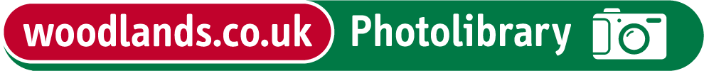 Woodlands Photolibrary logo