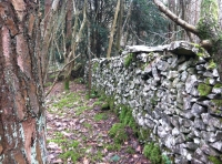 The boundary wall