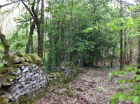 The old stone boundary wall