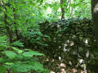 Old stone wall at the boundary