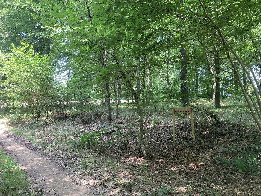 Flintlock Wood