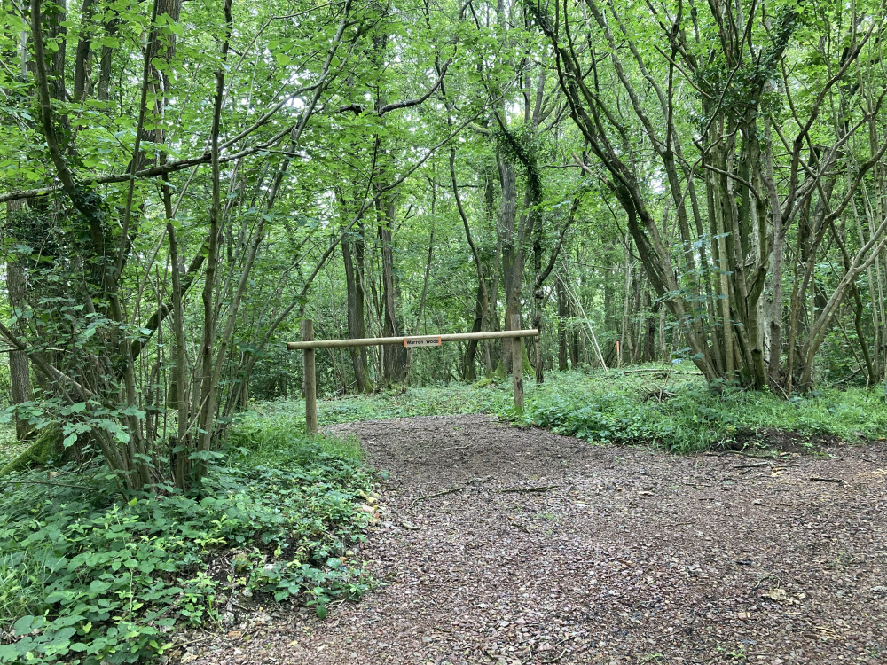 The entrance to Warren Wood
