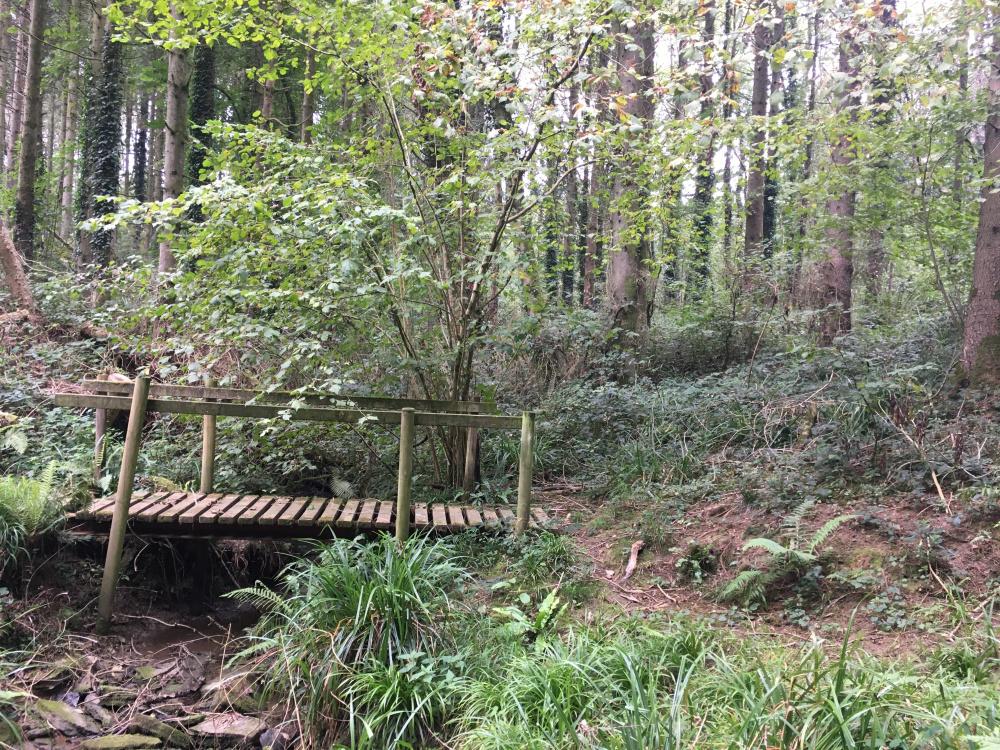 The bridging point