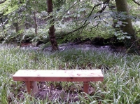 bench by river