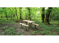Rustic picnic bench in a beautiful wooded surround