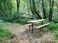 Private picnic area near the stream