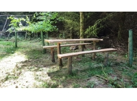 Rustic picnic bench in a clearing