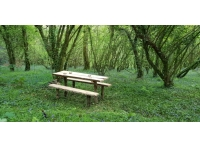Rustic picnic bench in stunning surroundings