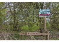 Brookfields Wood - SOLD