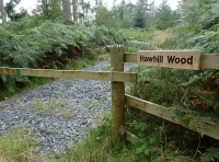 Hawhill Wood - SOLD