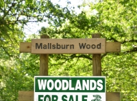 Mallsburn Wood