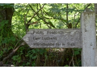 Plentyful local walks in the area