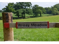 Wreay meadow