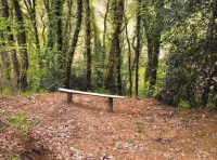 Bench in a level area suited for camping