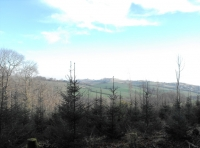 Attractive views from the woodland to the east