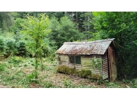 Old forestry shed ideal for upgrade or replacement