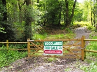 Main entrance gate that takes you to the northern area of woodland