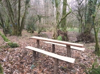 Picnic bench by the stream at the northern edge