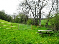 Rustic picnic bench in a shared private riverside area
