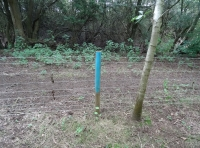 boundary marking and back fence