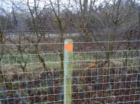high quality horse fencing