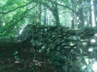 Old stone wall that forms a boundary