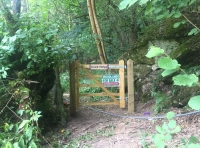 Gate into the wood