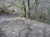 Final section of the access track to the wood