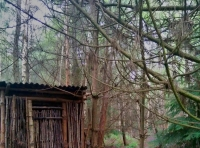 Rustic built outhouse.