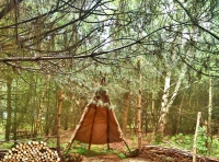 Firewood and teepee shelter.