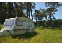 Touring caravan located in a clearing.