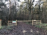 The ride-stop entrance to the wood
