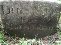 An interesting marker stone found in the wood.