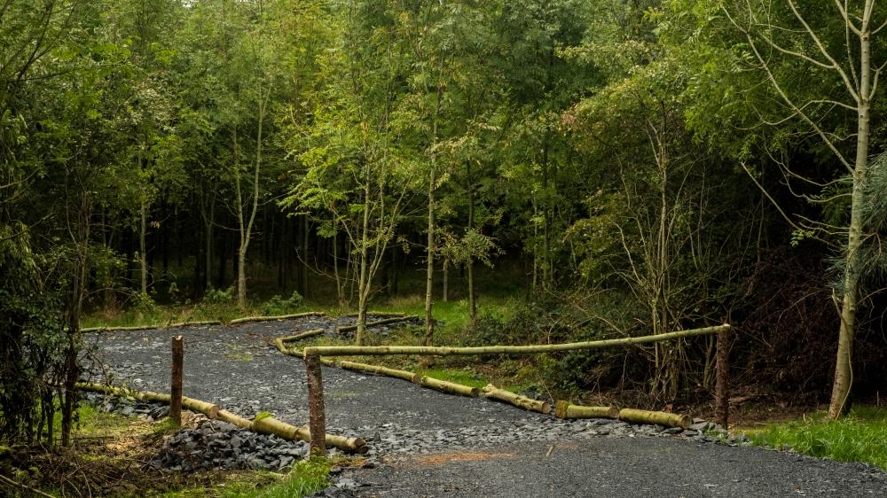 Entrance to Harvestman Wood