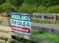 Crith Wood - SOLD