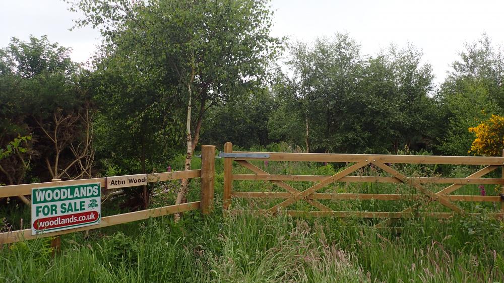 Ridestop entrance