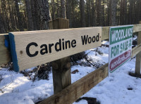 Cardine Wood - SOLD