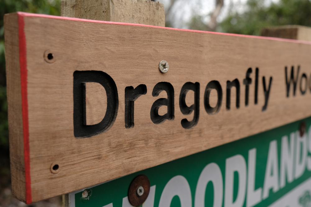 Woodland sign