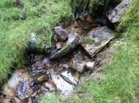 Rocky bed of stream