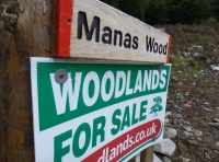 Manas Wood - SOLD