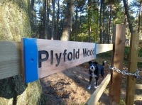 Plyfold Wood
