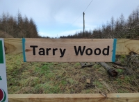 Tarry Wood - SOLD