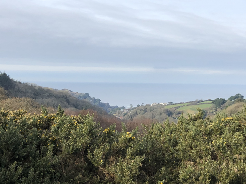 Views over Lee Bay