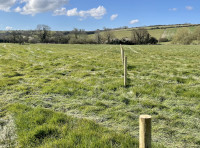 Looking down the northern boundary, demarcated with stakes