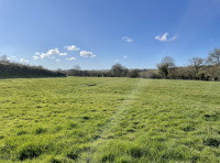 Blue skies over Merryfield Meadow