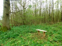 The seat by the oak