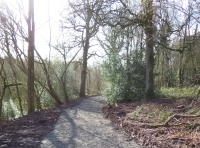 New track leading to Badger Oak Wood