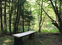Bench in a flat spot, potential for camping