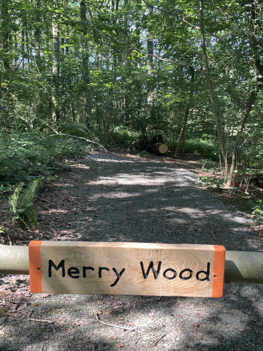 Parking area for Merry wood